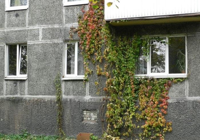 Квартира Калининград, Московский проспект, 125