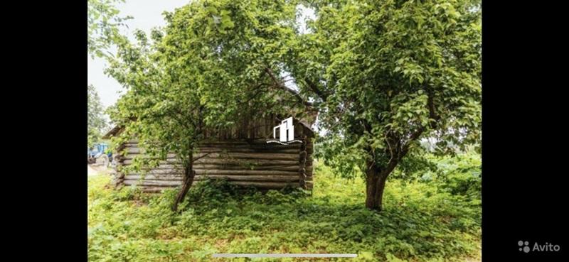 село Никиткино