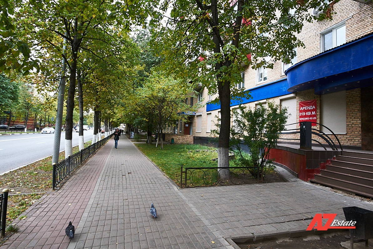 Аренда ПСН 219 кв.м в Балашихе-1 - фото 8