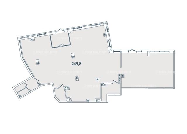 Продажа помещения 249.80 кв.м. Петроградский ул. Ремесленная, 21 - фотография №2