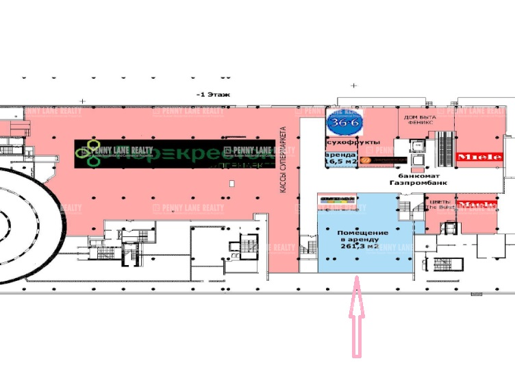 Аренда помещения 261.30 кв.м. СЗАО пр-кт Ленинградский, 31А - фотография №4